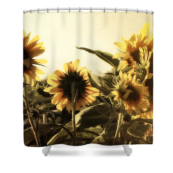 Sunflowers In Tone Shower Curtain