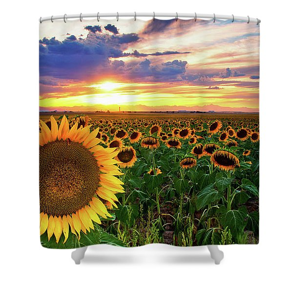 Shower Curtain featuring the photograph Sunflowers Of Golden Hour by John De Bord