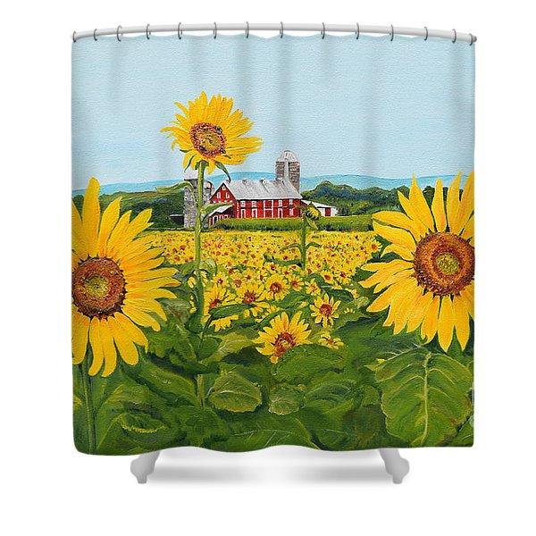 Sunflowers On Route 45 - Pennsylvania- Autumn Glow Shower Curtain