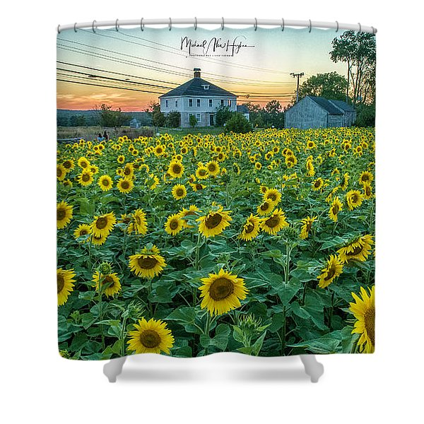 Sunflowers For Wishes  Shower Curtain