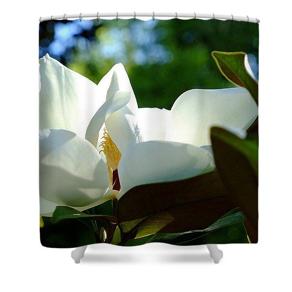 Sunlit Bloom Shower Curtain