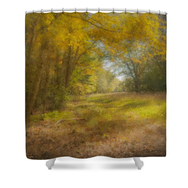 Sunlit Meadow In Borderland Shower Curtain