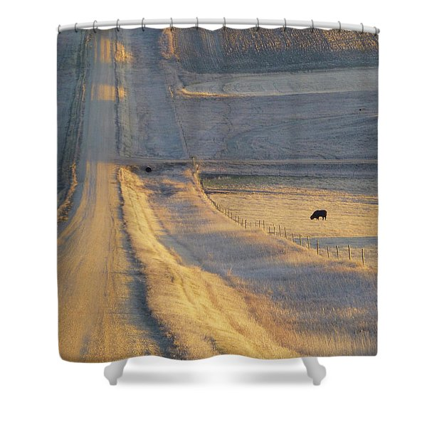 Shower Curtain featuring the photograph Sunlit Road by Cris Fulton