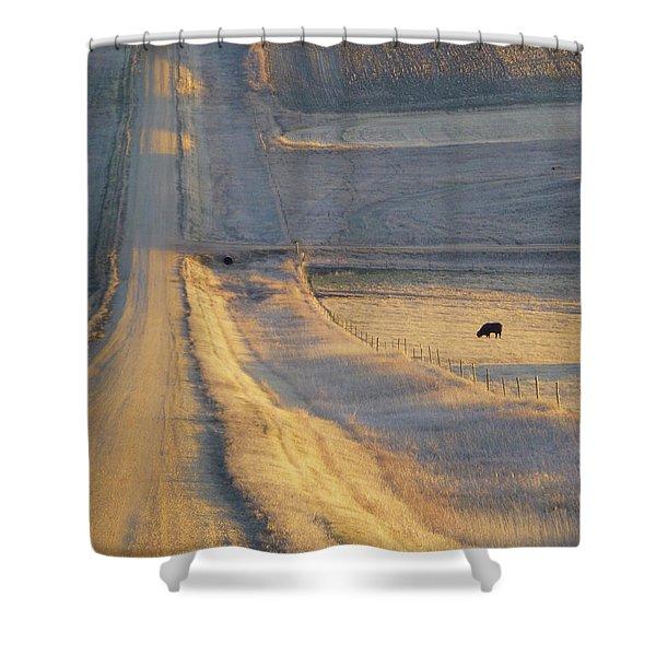 Sunlit Road Shower Curtain