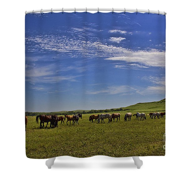 Sunny Day In The Flint Hills Shower Curtain