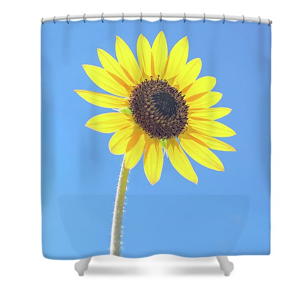 Sunny Delight Shower Curtain