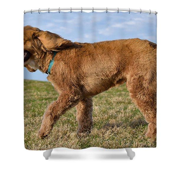 Sunny Stroll Shower Curtain