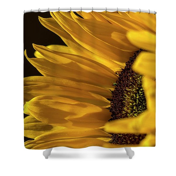 Shower Curtain featuring the photograph Sunny Too By Mike-hope by Michael Hope