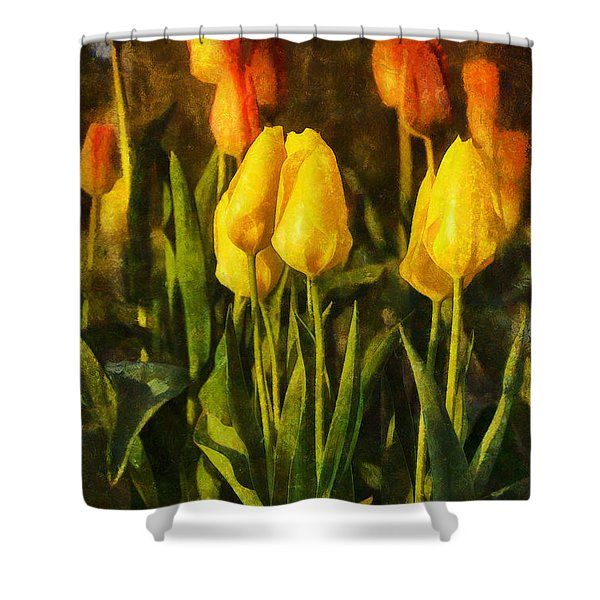 Sunny Tulips Shower Curtain