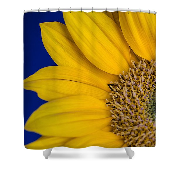 Sunnyside Shower Curtain
