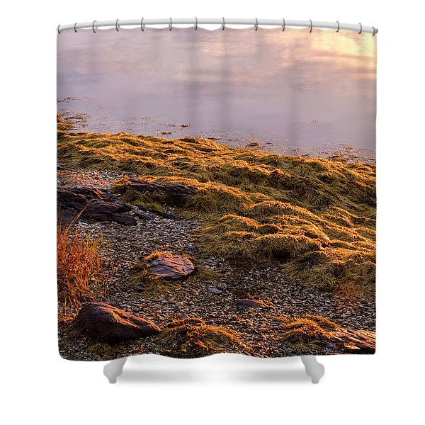 Shower Curtain featuring the photograph Sunrise Light by Tom Singleton