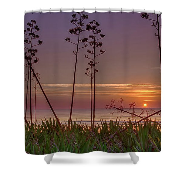 Sunrise Palm Blooms Shower Curtain