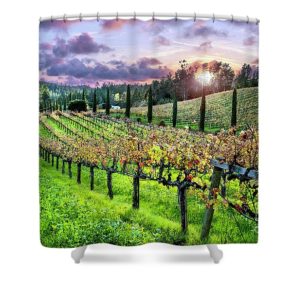 Sunset At The Palmers Shower Curtain