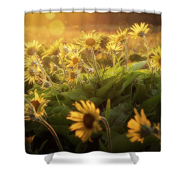 Sunset Balsam Shower Curtain