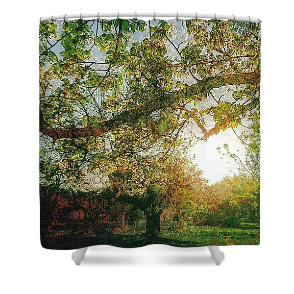 Shower Curtain featuring the photograph Sunset  by Bee-Bee Deigner