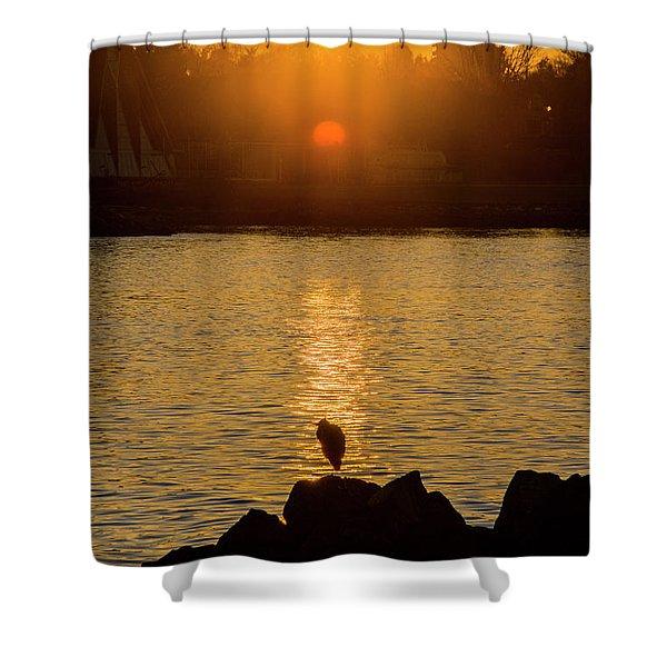 Sunset Heron Shower Curtain