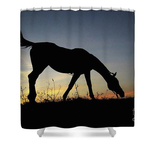Sunset Horse Shower Curtain