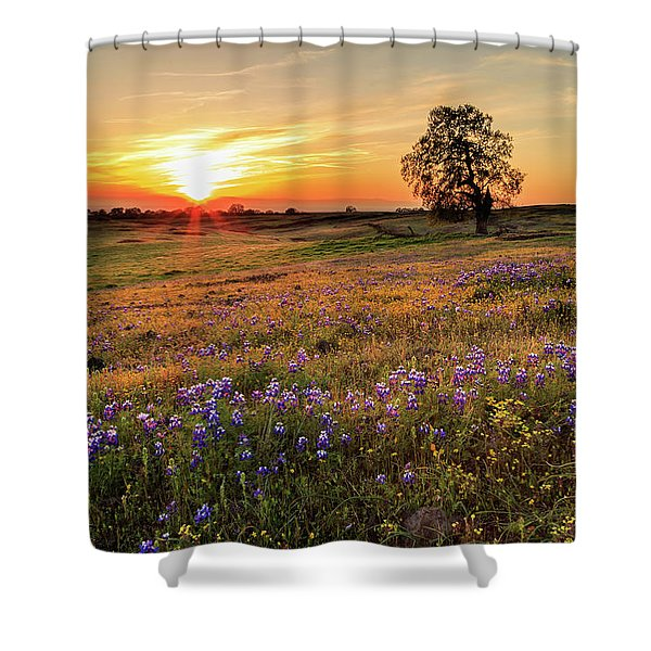 Sunset On North Table Mountain Shower Curtain
