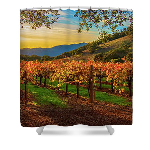 Sunset Over Gamble Vineyards Shower Curtain
