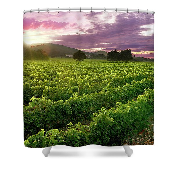 Sunset Over The Vineyard Shower Curtain