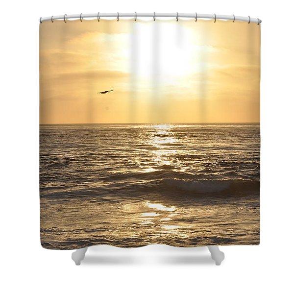 Sunset Pelican Silhouette Shower Curtain