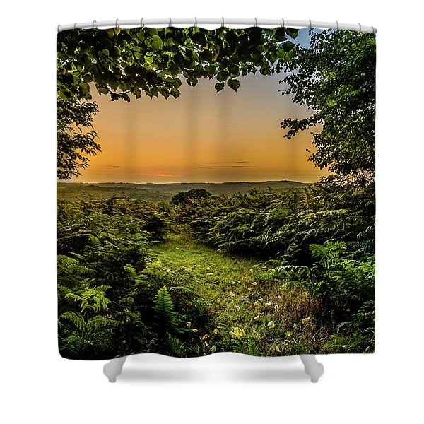 Shower Curtain featuring the photograph Sunset Through Trees by Nick Bywater