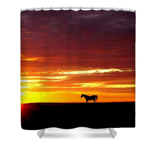 Sunset Watcher Shower Curtain