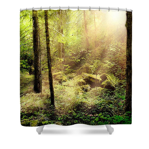 Sunshine From Above Shower Curtain