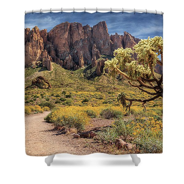 Superstition Mountain Cholla Shower Curtain