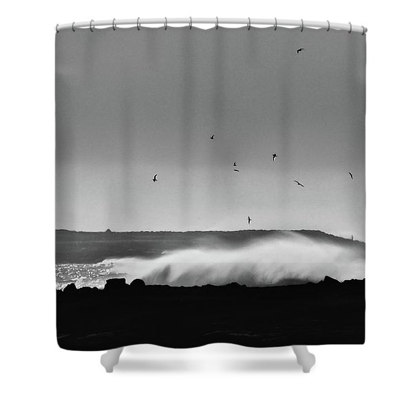 Surf Birds Shower Curtain
