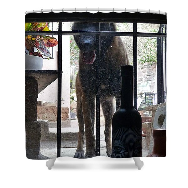 Surprise Visitor Shower Curtain