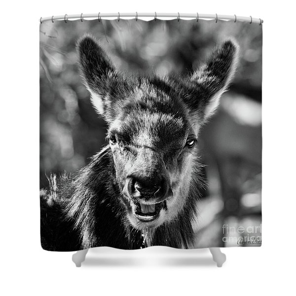 Surprise, Black And White Shower Curtain