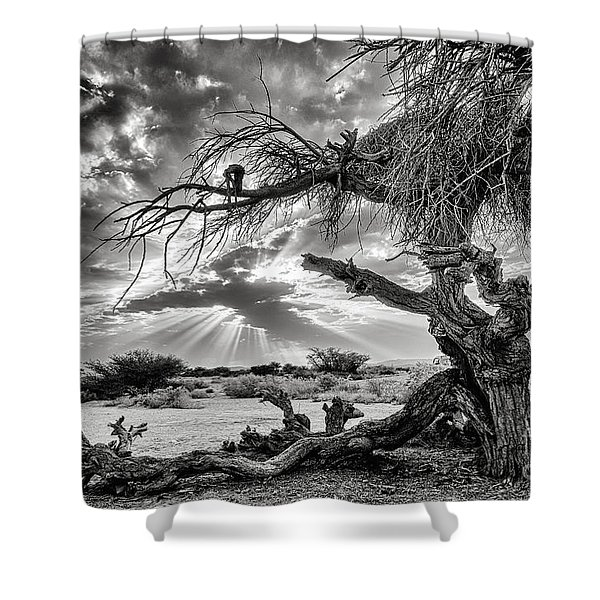 Surrealism At Its Best Shower Curtain