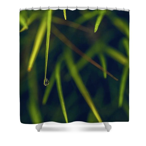Suspended Shower Curtain