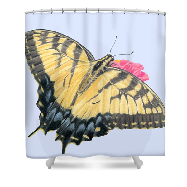 Swallowtail Butterfly And Zinnia- Transparent Backgroud Shower Curtain