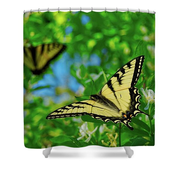 Swallowtails Shower Curtain