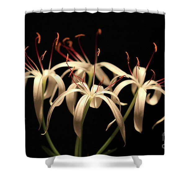Swamp Lily Shower Curtain