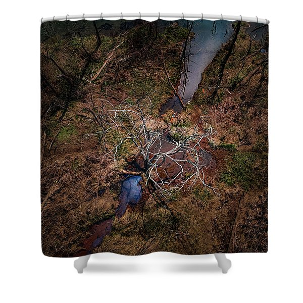 Swamp Tree Shower Curtain