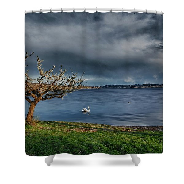 Swan And Tree Shower Curtain