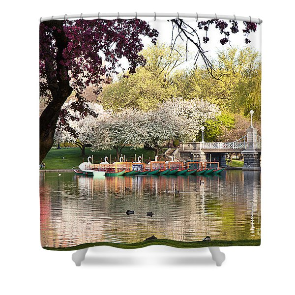 Swan Boats With Apple Blossoms Shower Curtain