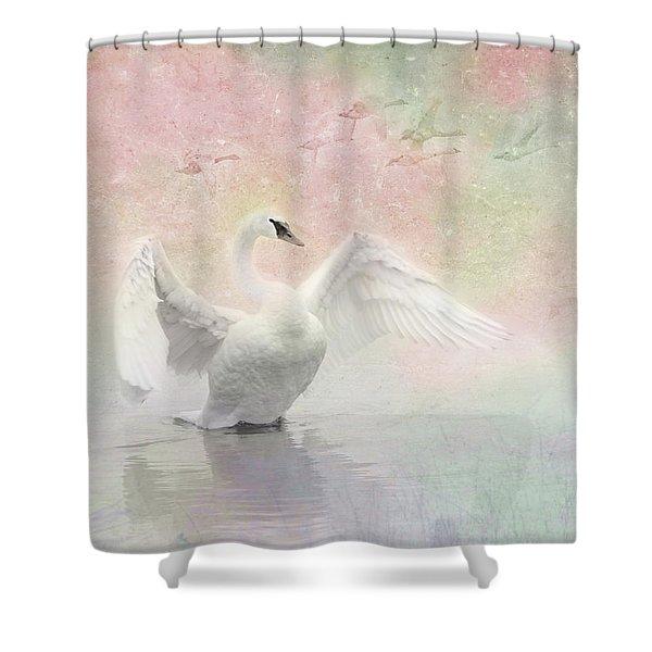 Swan Dream - Display Spring Pastel Colors Shower Curtain