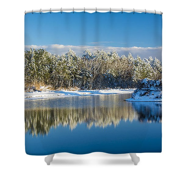 Swan Lake Winter Shower Curtain