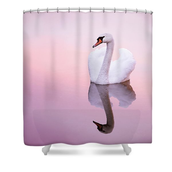 Swan Reflections Shower Curtain