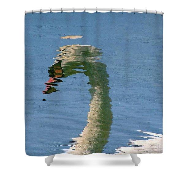 Swanreflection Shower Curtain