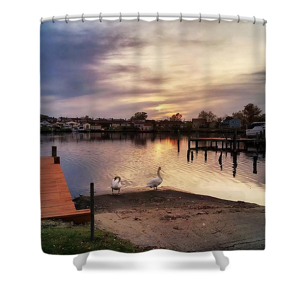 Swans Of Chink Creek Shower Curtain