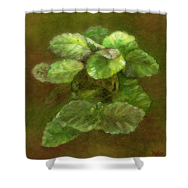Swedish Ivy Shower Curtain