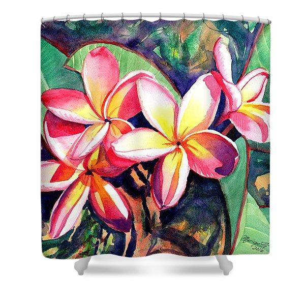 Sweet Plumeria Shower Curtain