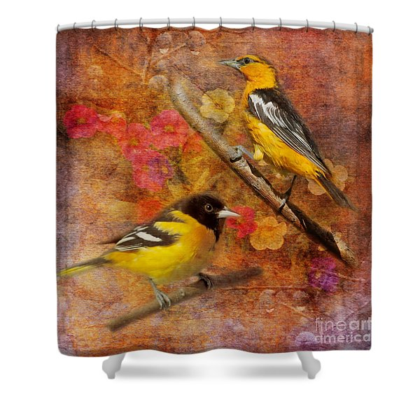Sweet Sweet Song 2015 Shower Curtain