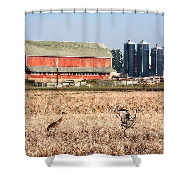 Swiss Cranes Shower Curtain