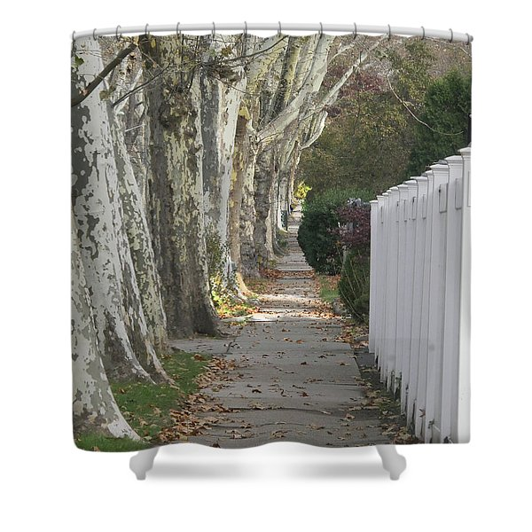 Sycamore Walk Shower Curtain
